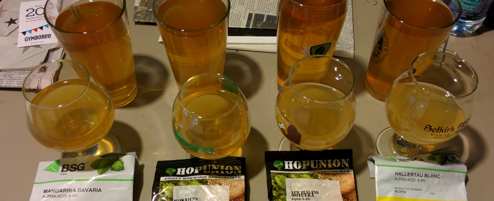 Dry Hopping Sour and Wild Beer Experiment #2